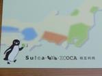 Sui03_4