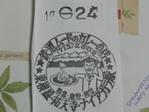 Naiagara08